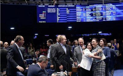 Plenário aprova novo marco legal das franquias